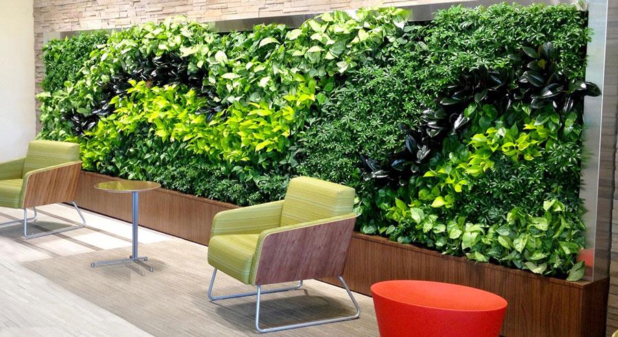 فروش گلدان دیوار سبز